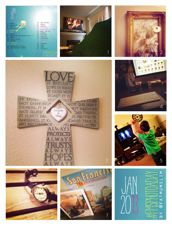 fmsphotoaday-january-2013-collage1