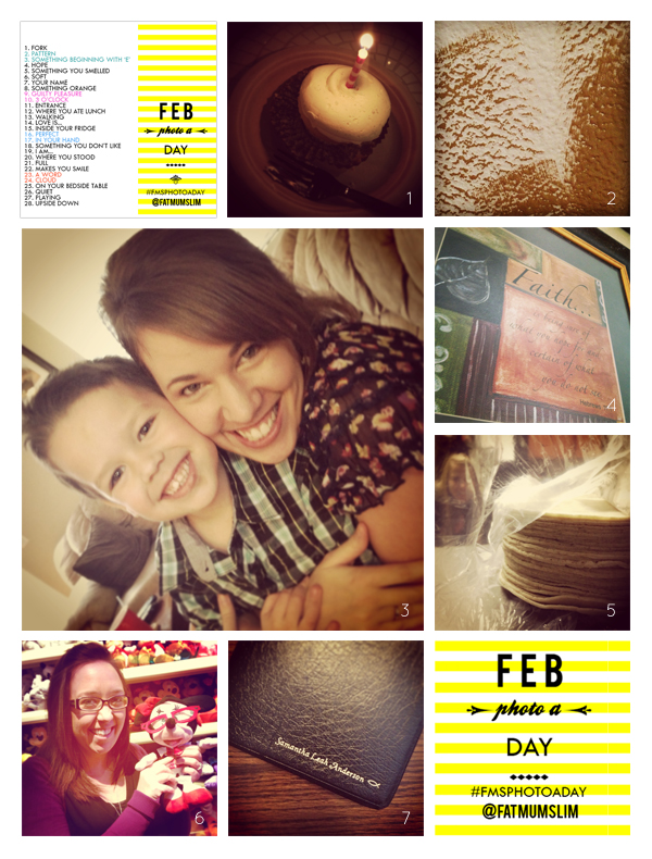 fmsphotoaday-february-2013-collage1