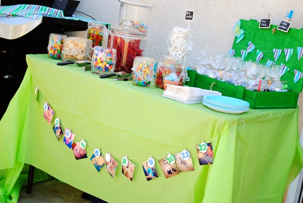 graysons-bug-birthday-party-photography_0777