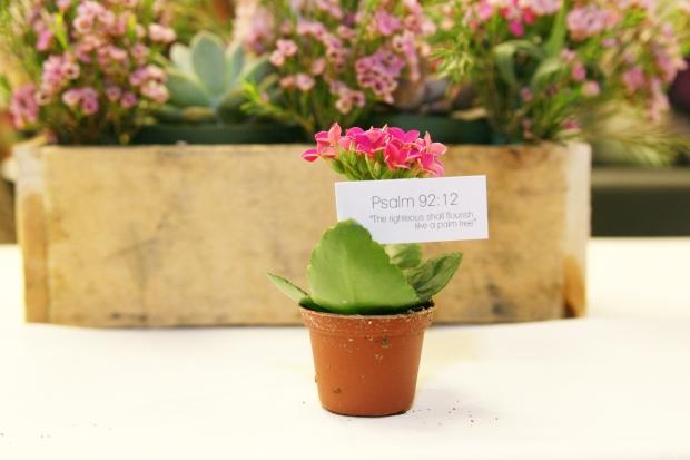 womens-luncheon-flourish-succulents_7597