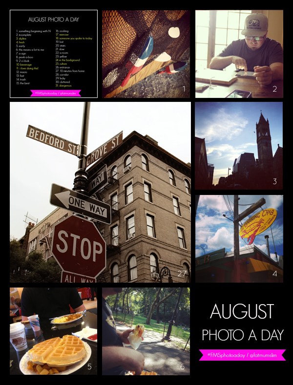 fmsphotoaday-august-2013-collage1