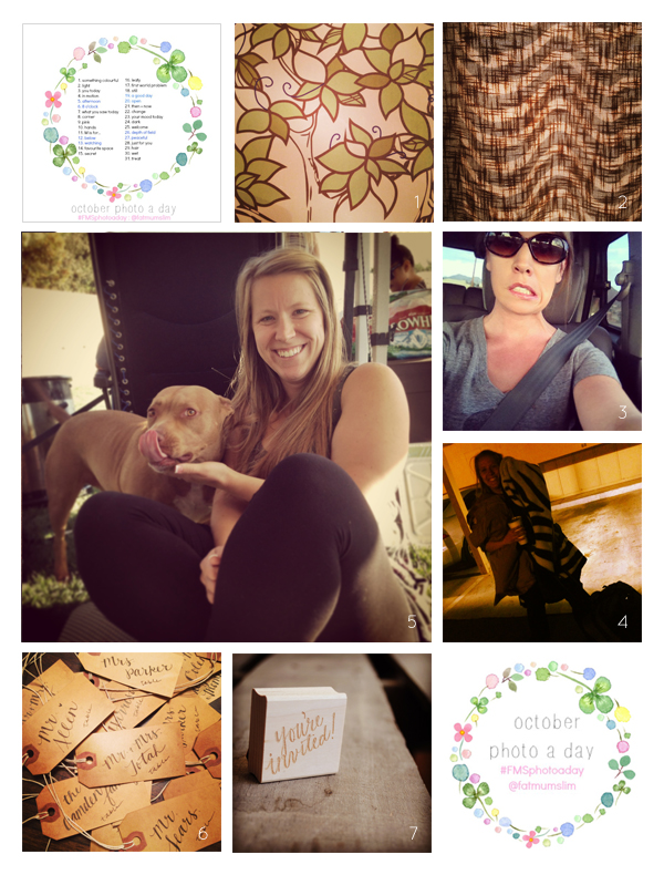 fmsphotoaday-oct-2013-collage1