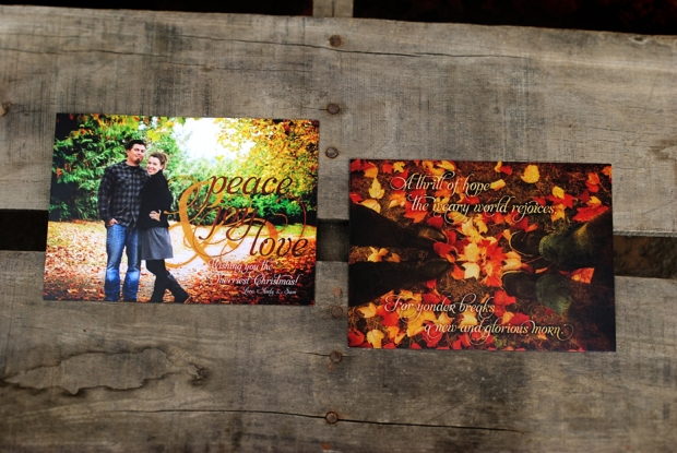 christmas-cards-2012-allens_0286