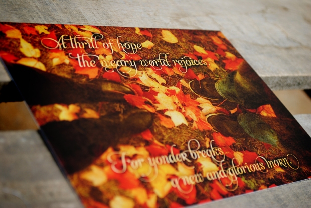 christmas-cards-2012-allens_0293