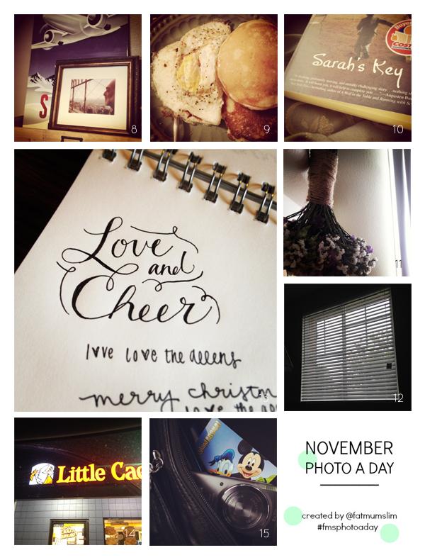 fmsphotoaday-nov-2013-collage2