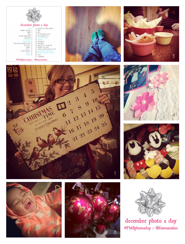 fmsphotoaday-dec-2013-collage1