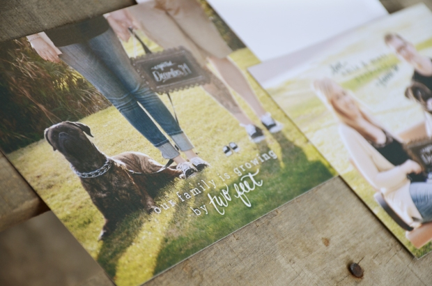 your new friend sam pregnancy announcement calligraphy photo card 098