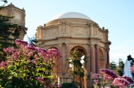 palace of the fine arts 601